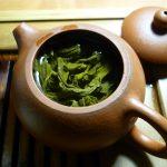 <b>Magia zielonej herbaty – dlaczego warto po nią sięgać?</b>